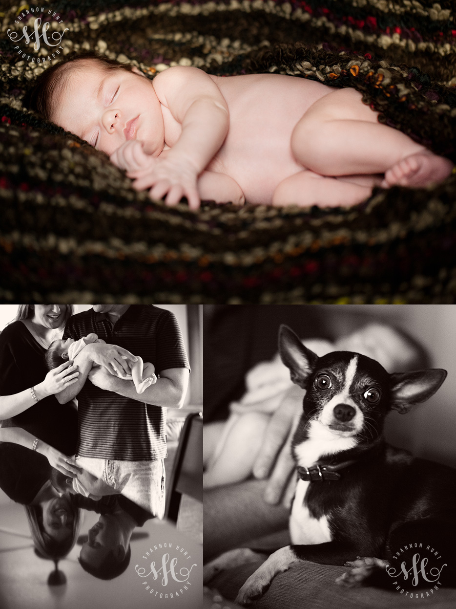 Temple Harker Heights Killeen Texas newborn child baby photographers