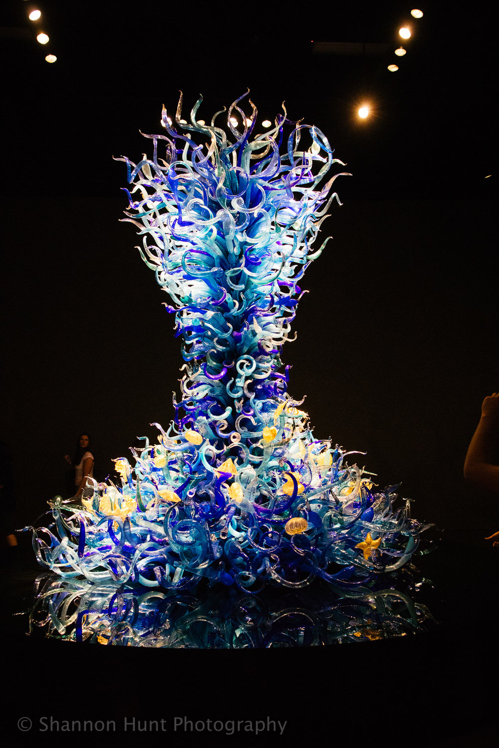 The Glass Museum and Dale Chihuly's work was so mesmerizing. My friend and I gasped each time we turned a corner and peeked into the next room.