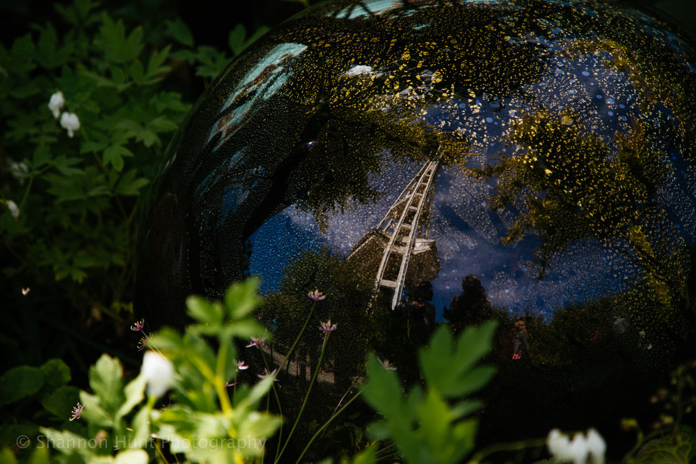 Space Needle reflection in the gardens.
