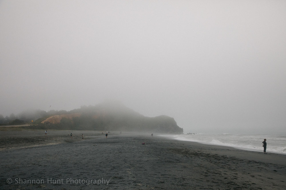 Cold foggy beaches are my favorite.