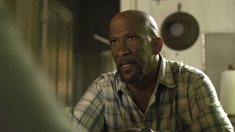 OUTSTANDING GUEST ACTOR IN A DRAMA SERIES REG E. CATHEY - HOUSE OF CARDS