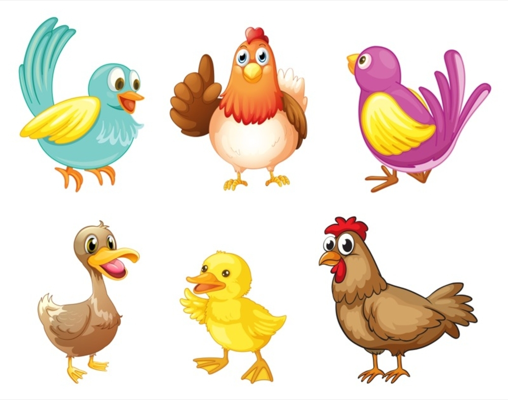 Do you flock with any old bird? Or are you different?