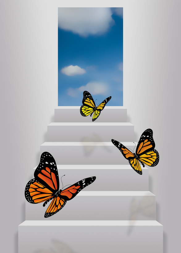 Ambitious Butterflies