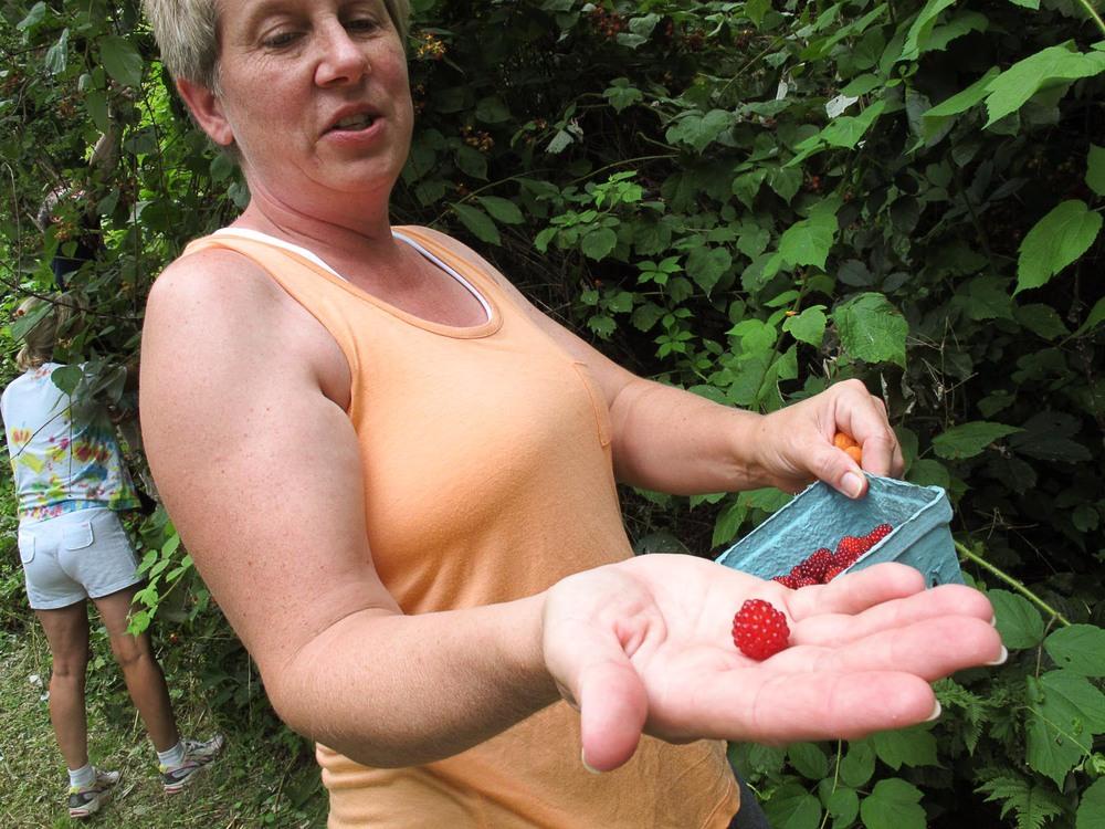 wineberries-1.jpg