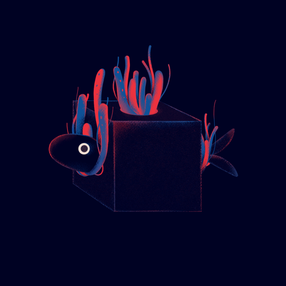 cube_fish_yoyo.jpg
