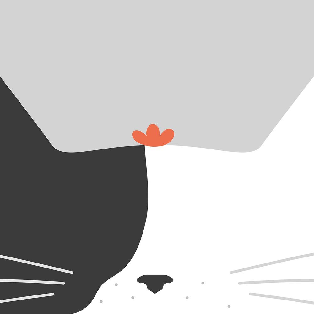 cat_face-01.jpg