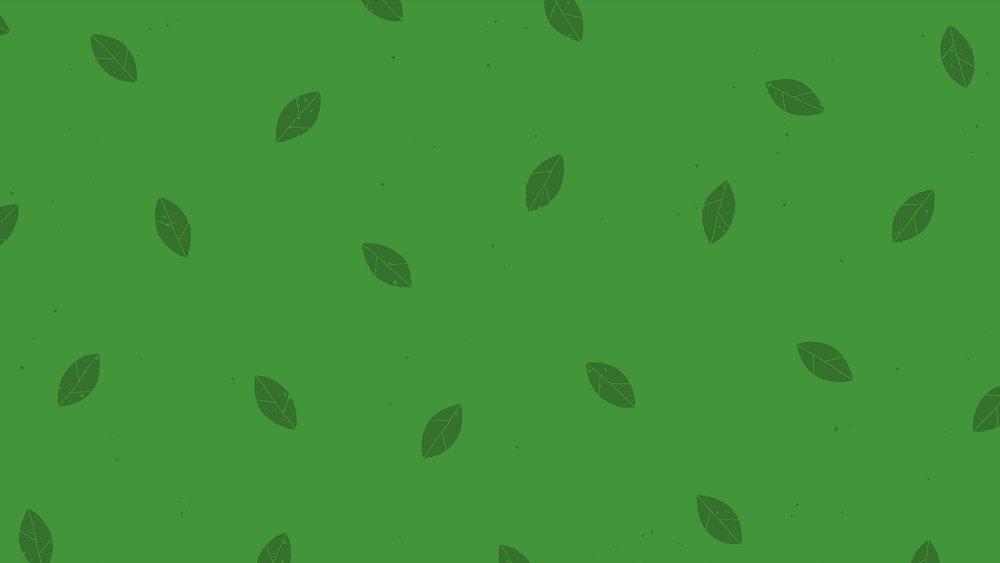 bg_leaf.jpg