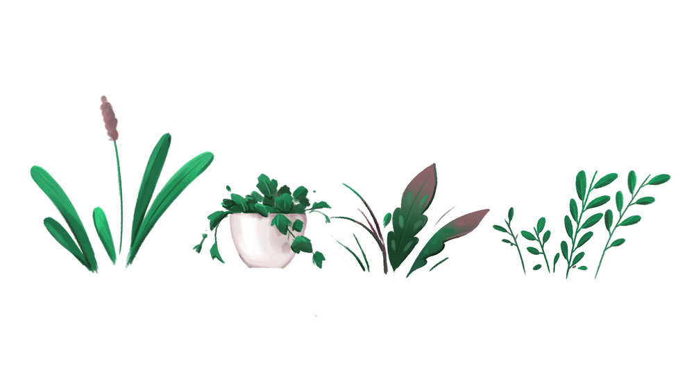 jimador_plants_yo_v01.jpg