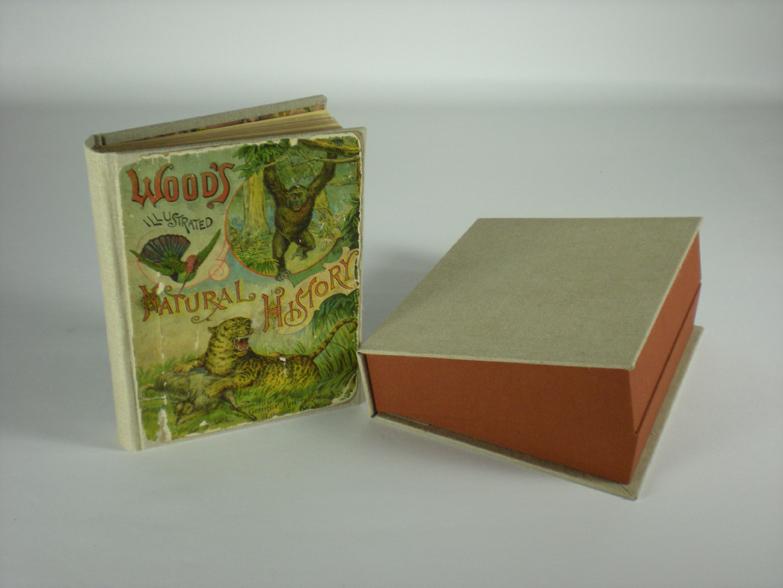 Woods Natural History
