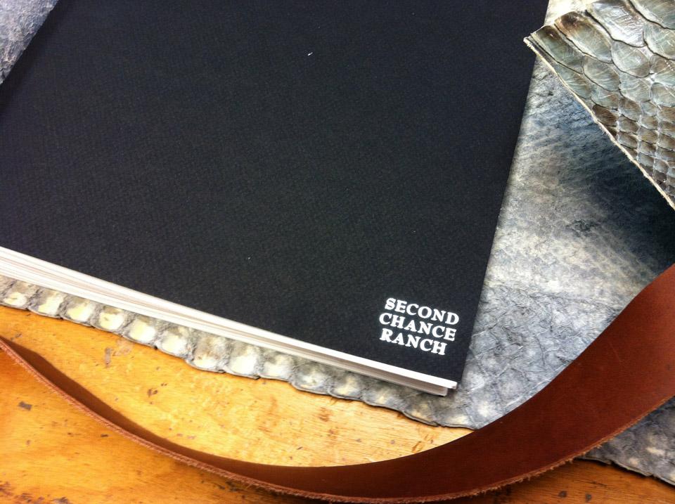 dski-design-python-guestbook-11.jpg