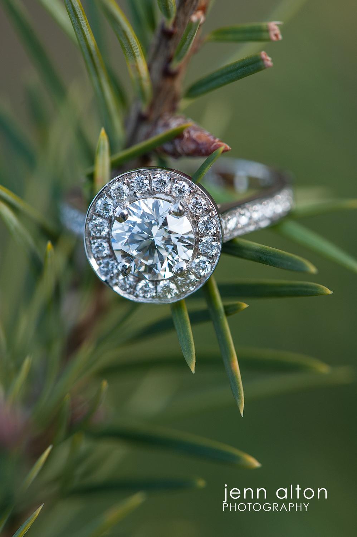 Diamong Engagement Ring, Surprise Proposal, Smolak Farm