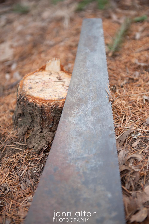 antique saw, Surpise Proposal, Smolak Farm, North Andover