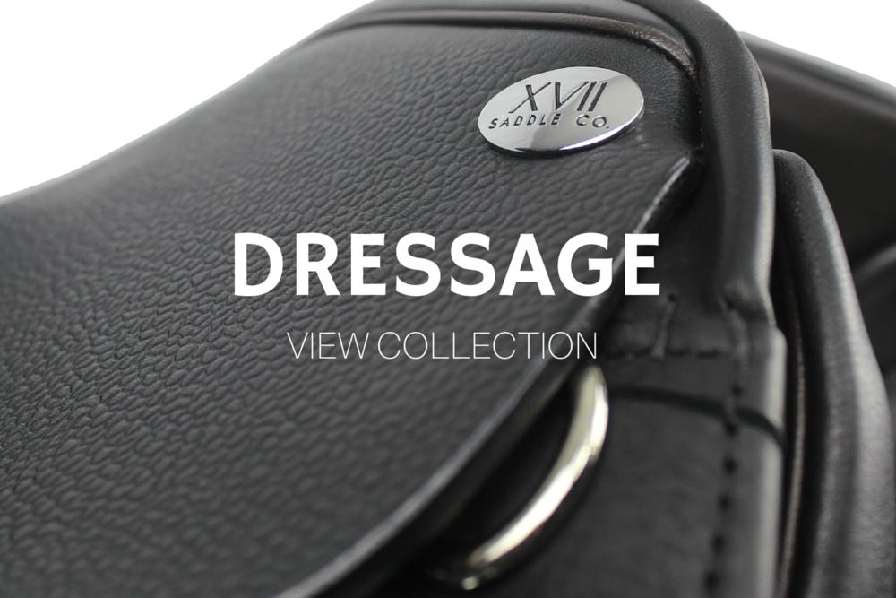 dressage models.png