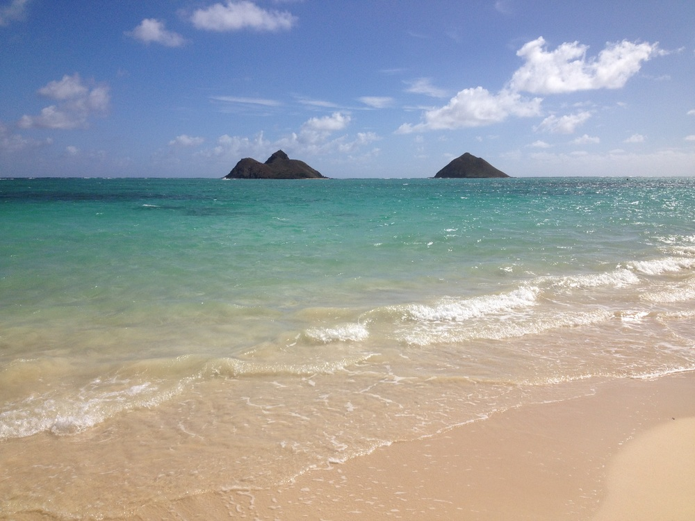 Lanikai Beach  - This is the Ocean where Jeff and I got engaged!  Pretty Awesome! Jeff usually does not jump when I tell him I am off to work. But when I told him I was booking a flight to Honolulu, he was in! After 10 years together, I guess taking him to a private beach house for a week to celebrate our anniversary deserved a ring! He even came saddle fitting with me!!!!  What a love xoxo