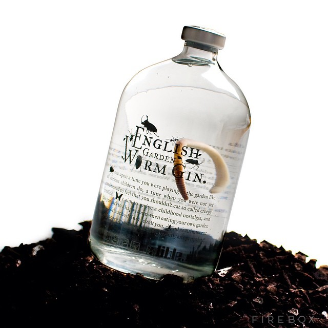 Worm for the road?! This unique gin is infused with a giant edible earthworm, adding a unique flavour! #littletipples