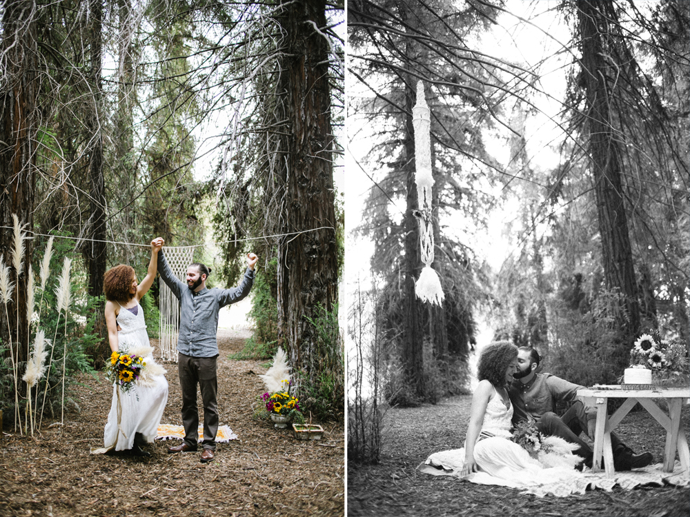 16 sequoia elopement.jpg