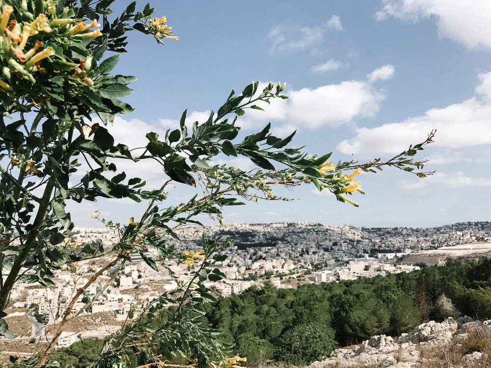 israelblog-42.jpg