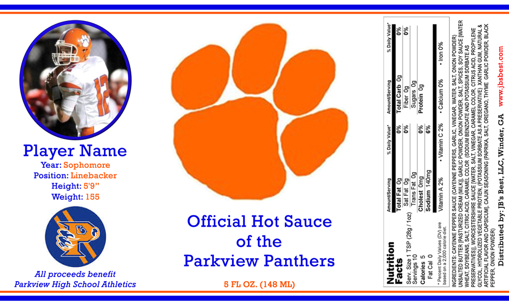 parkview-panthers-image