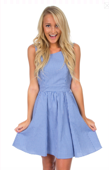 Photo credit: Lauren James The Emerson Gingham Dress