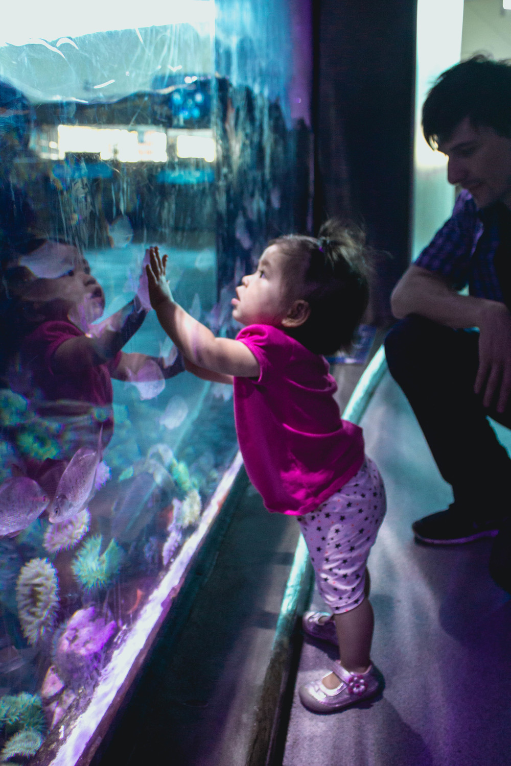 Selah at Long Beach Aquarium.jpg