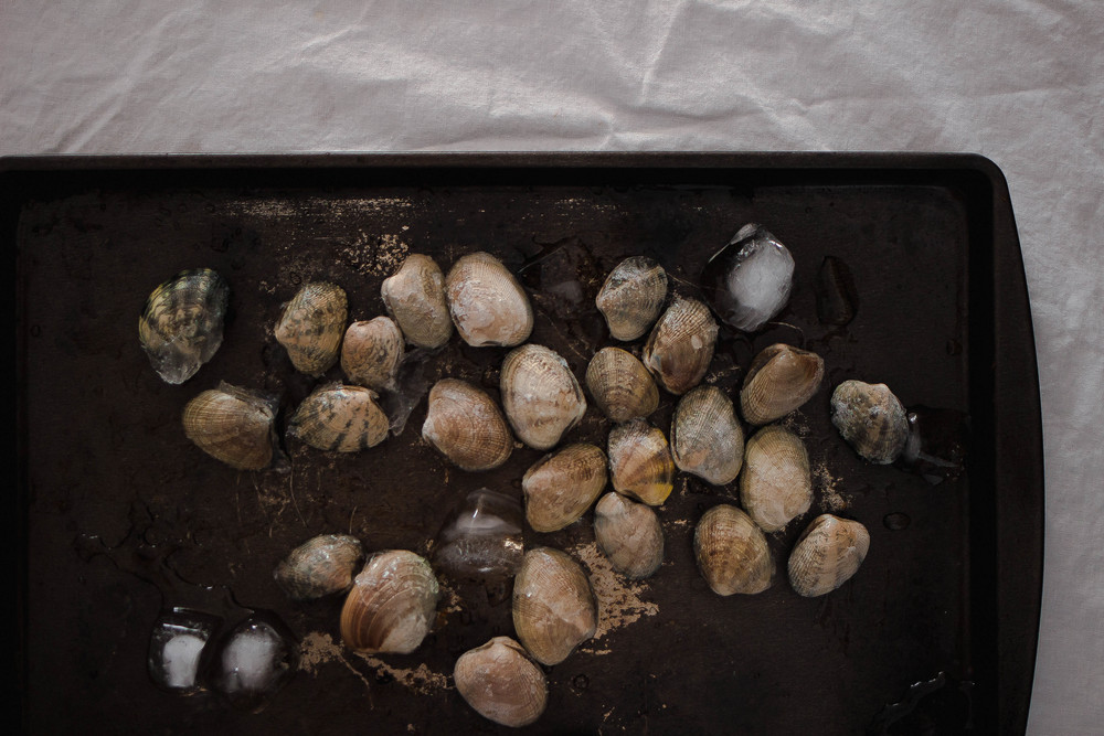 Fresh clams after soaking in water--how to prepare clams before cooking | by fit for the soul