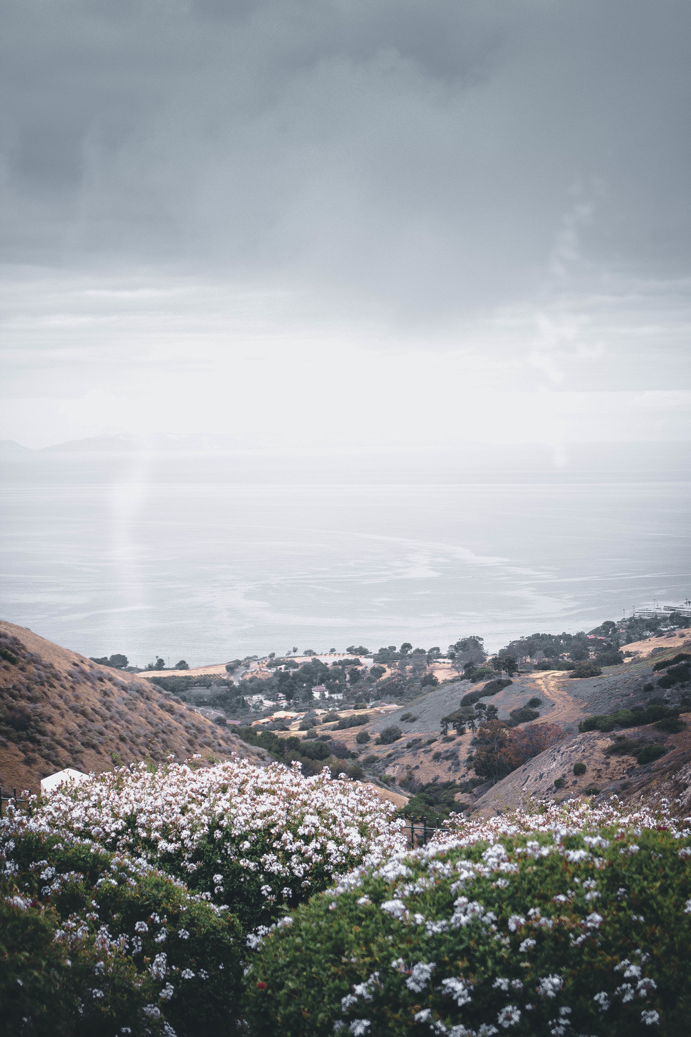 hiking trails in palos verdes, southern california | from scratch, mostly