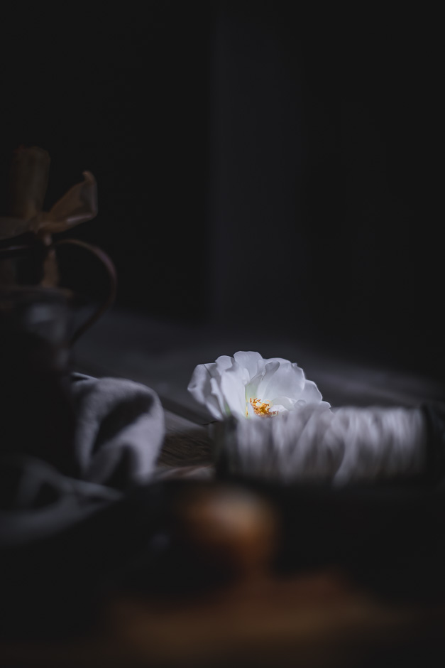 White rose, dark moody photography | from scratch mostly