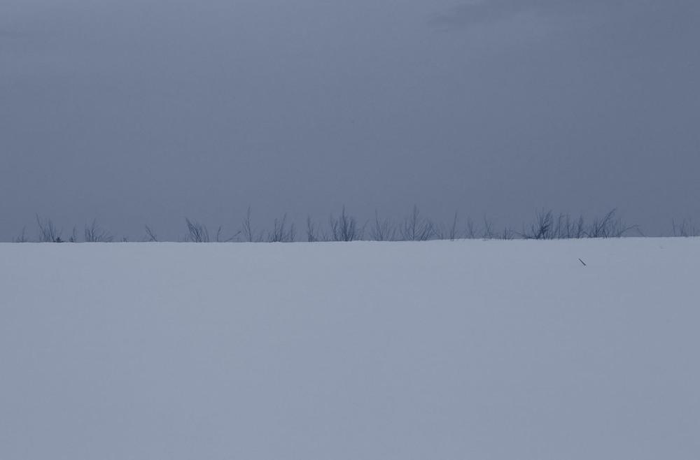 snow_0298 flak.jpg
