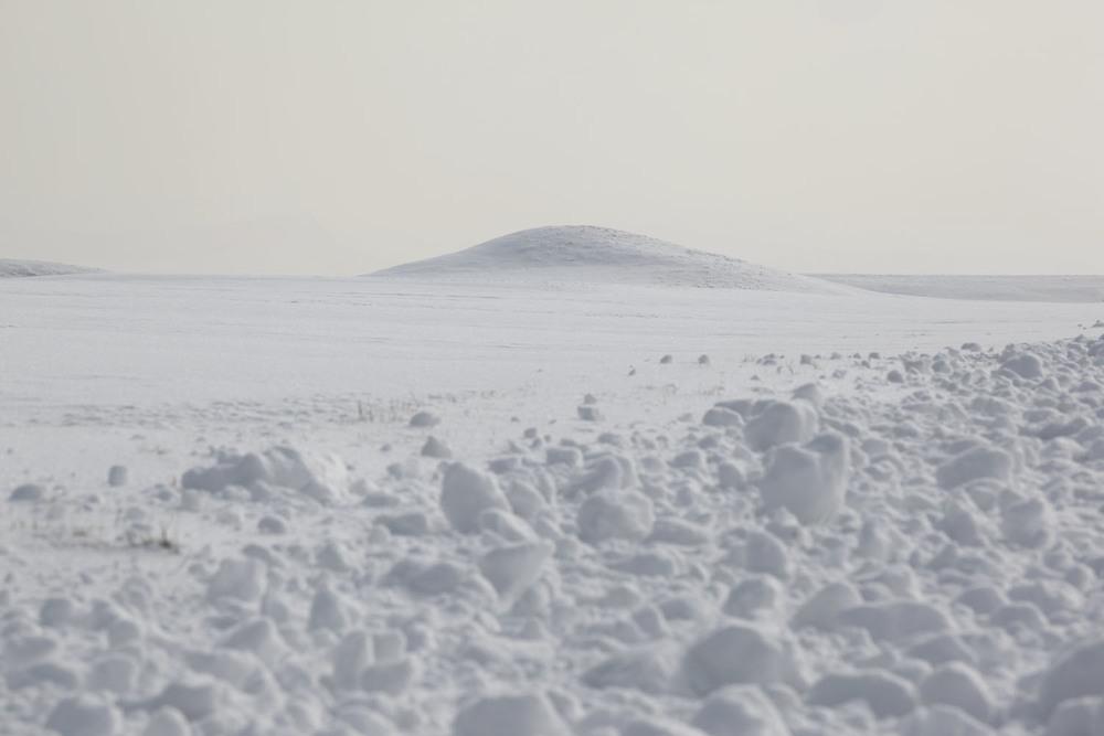 snow_0489 flak.jpg