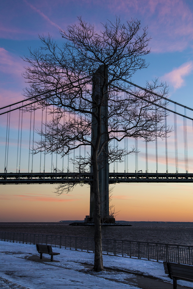 Bridge and Tree Silhouette.SUNSET.jp.319A7934.jpg