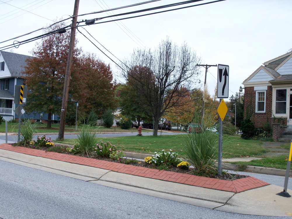 Ridge Avenue Median