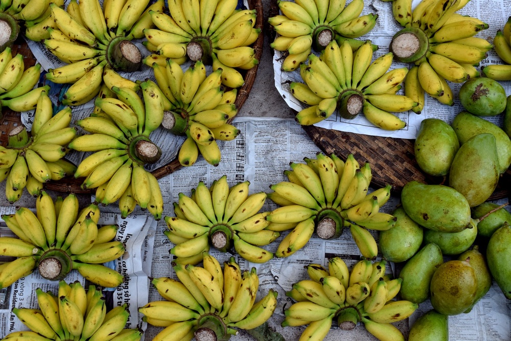 Bananas in the Mekong
