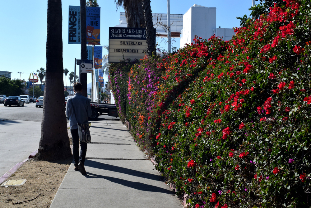 explore travel Los Angeles LA Los Feliz Silverlake hipster neighborhoods discover photography travel California CA Faye Lessler Sunset Blvd