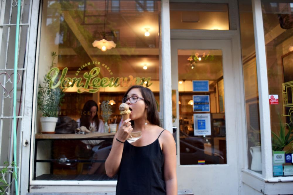 Van Leeuwen vegan ice cream is delicious in the East Village, New York.