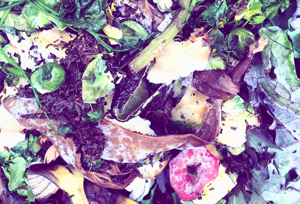 Compost being collected at the NYC Union Square Greenmarket.