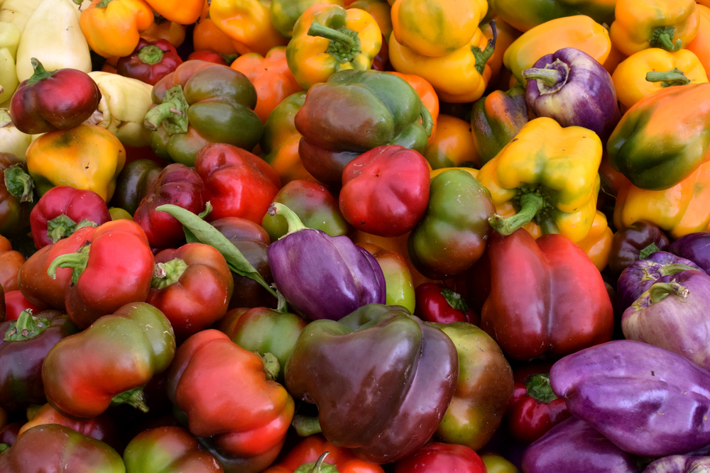 Gorgeous bell peppers in the height of summer at the NYC Union Square Greenmarket.