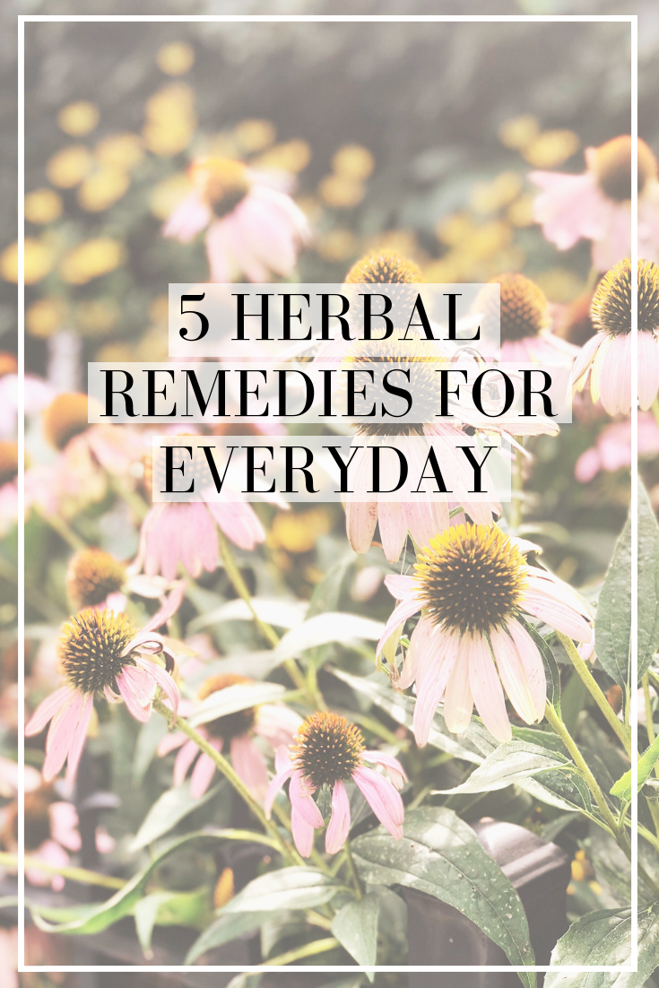 5 herbal remedies for everyday use