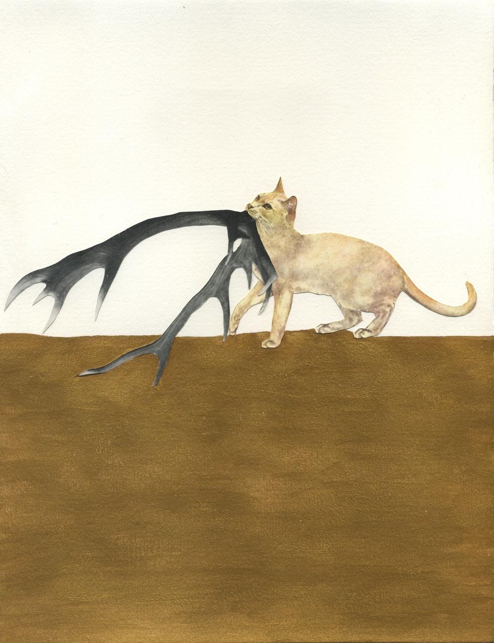 goldcat147.jpg