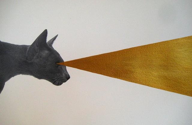 laser cat #367