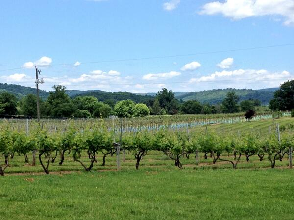 Philip Carter Winery   in Hume, VA