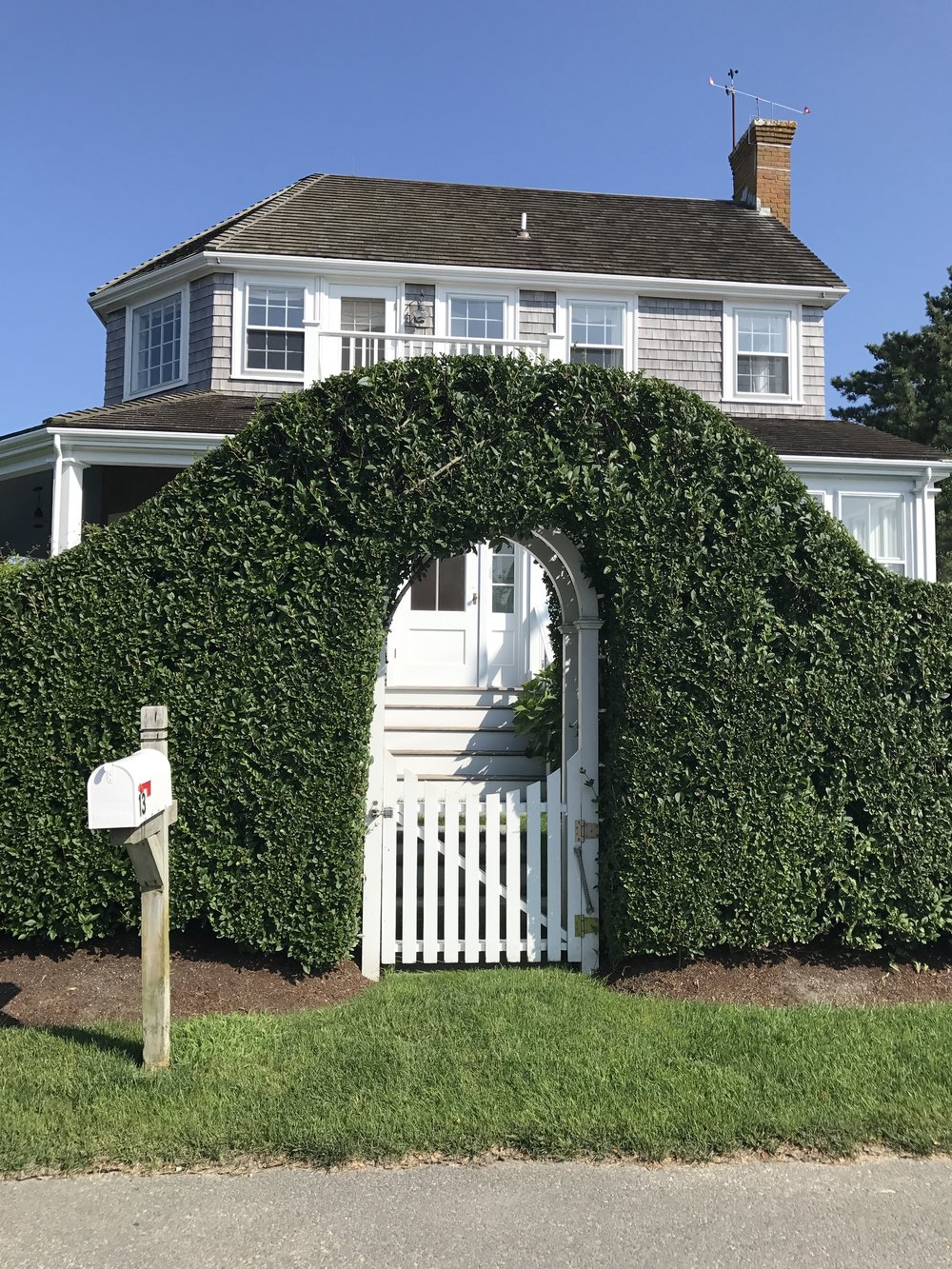 Nantucket Hedges.jpg
