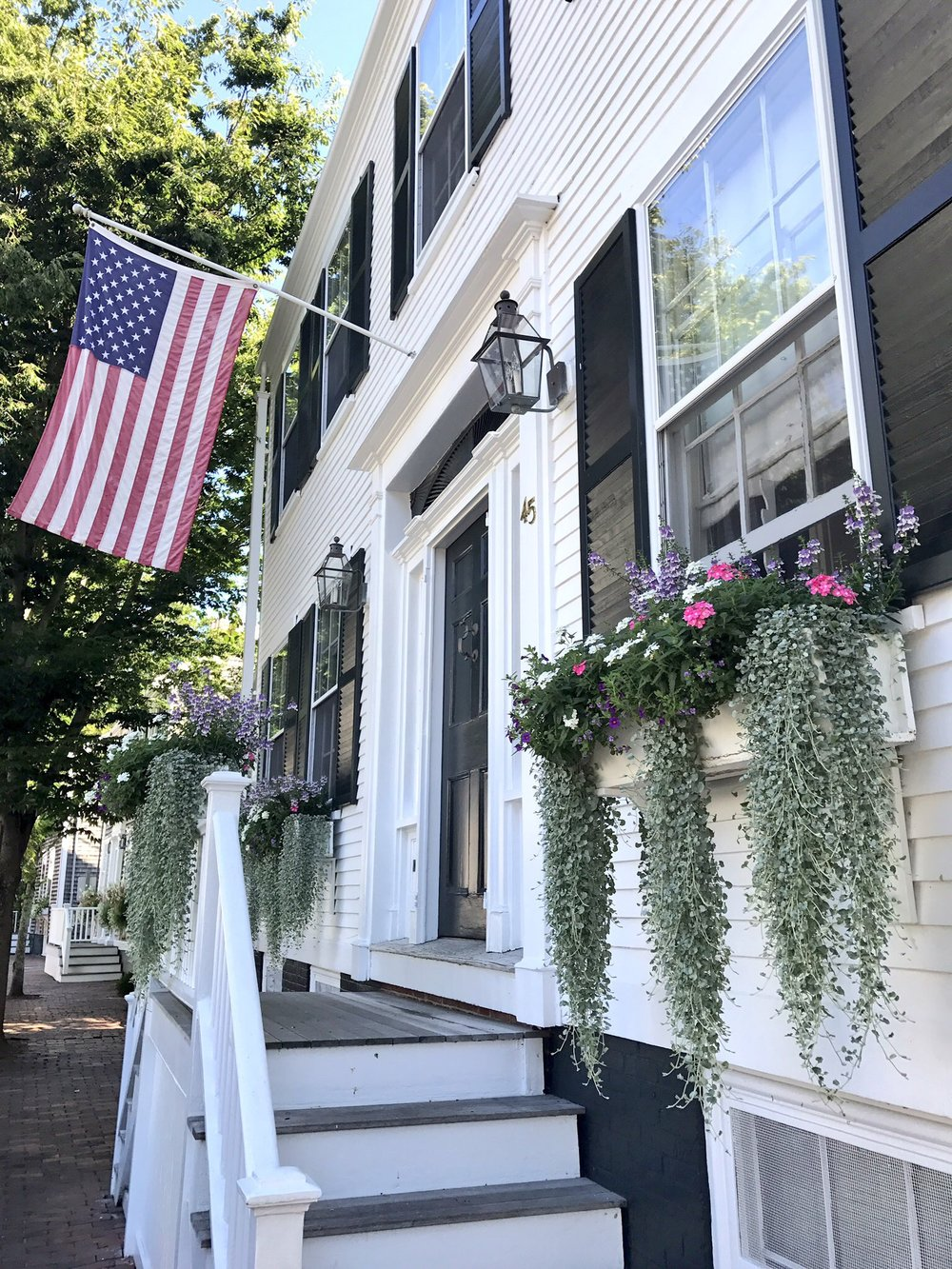 Nantucket Window Boxes.jpg