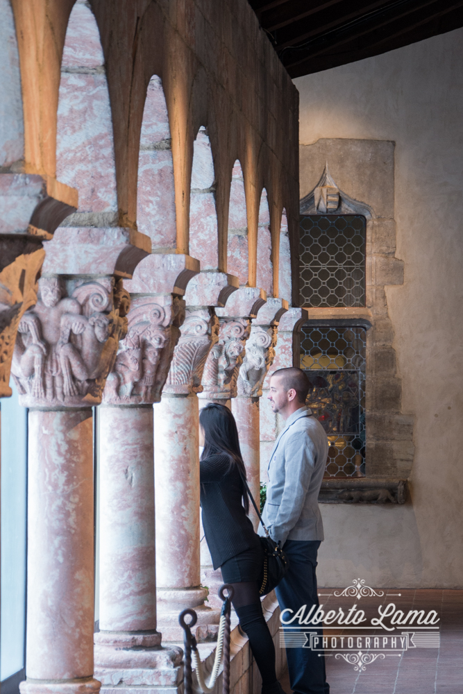 Secret Proposal at The Cloisters 2.jpg