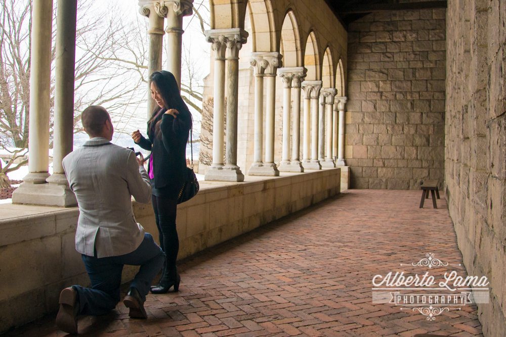 Secret Proposal at The Cloisters 4.jpg