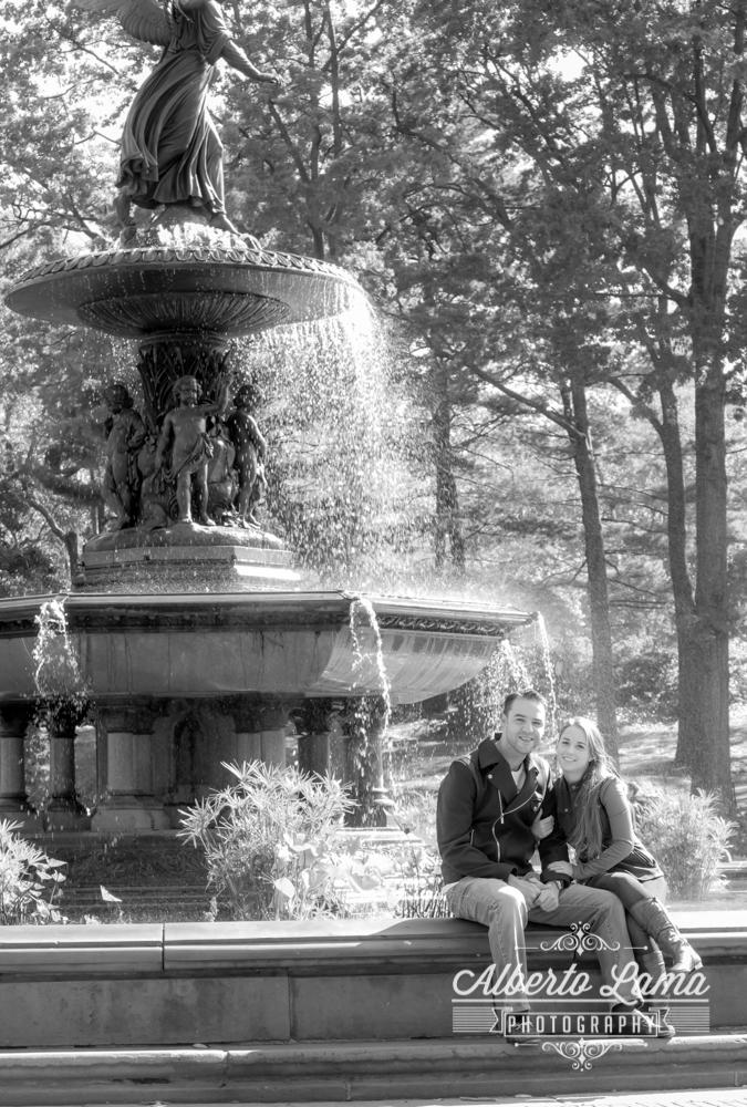 Secret Proposal in Central Park