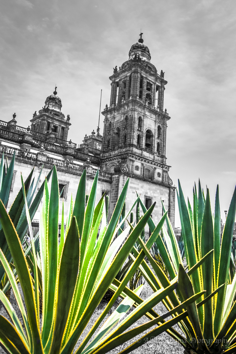 Ciudad de Mexico by Alberto Lama. Travel Photographer