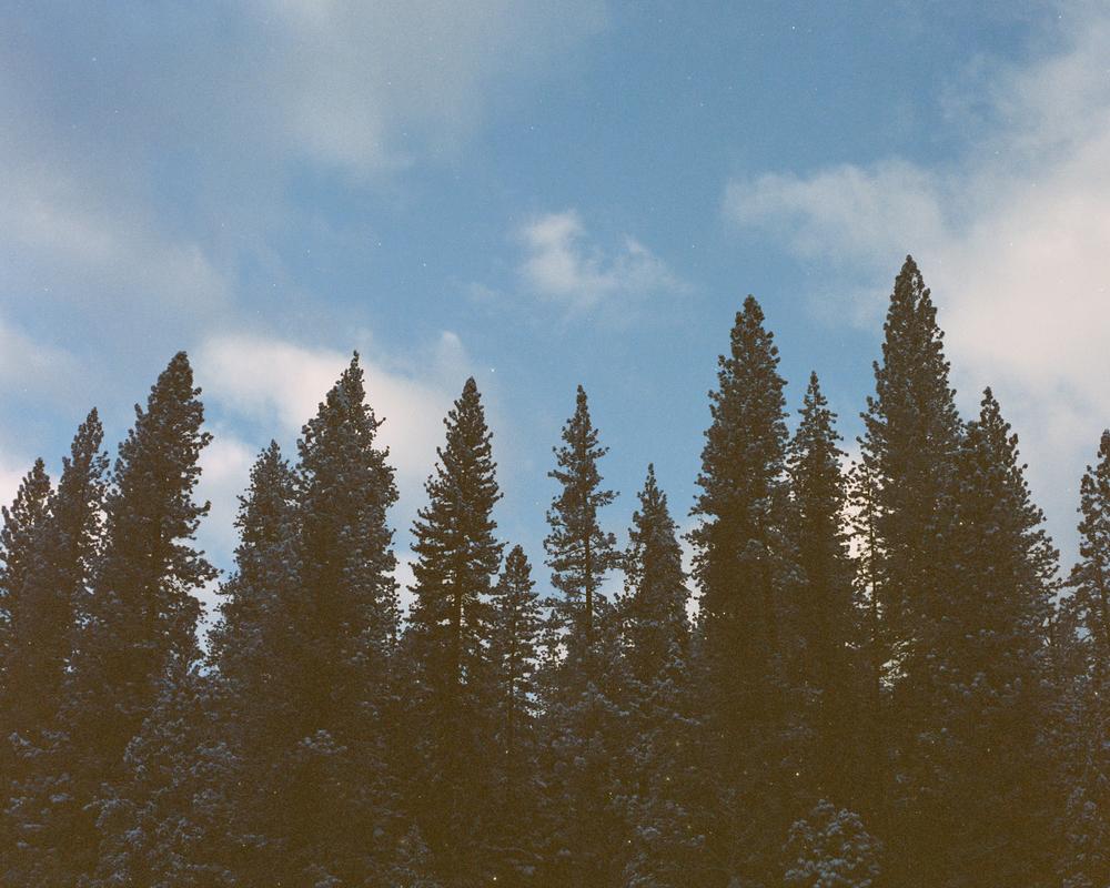 Yosemite - 2012