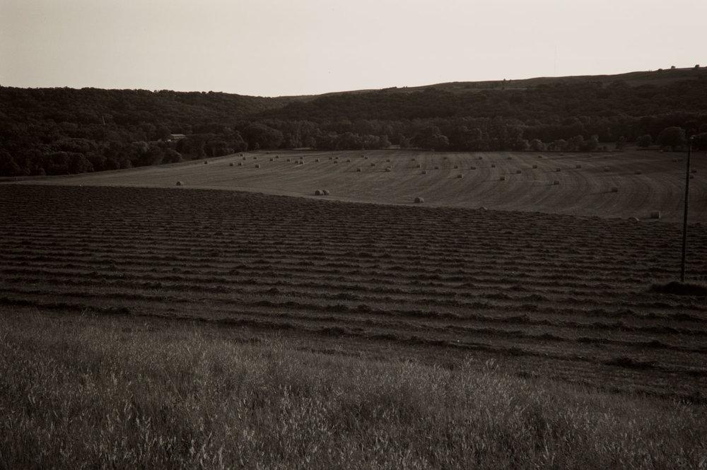 Hay Field, Ft. Ransom, North Dakota