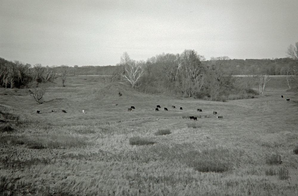 Western Wisconsin