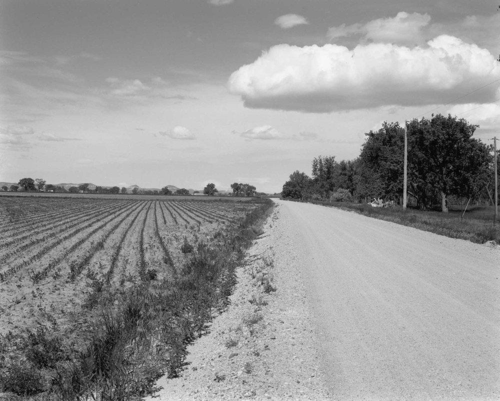Plains_01.jpg